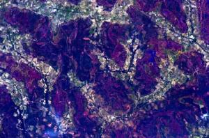 আফ্ৰিকাক মহাকাশৰ পৰা বেঙুনীয়া ৰঙত দেখা গৈছে